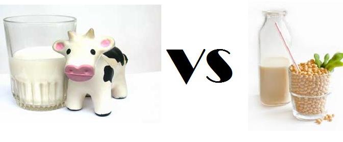 los-riesgos-de-la-leche-de-vaca